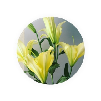yellow lily 1 Badges