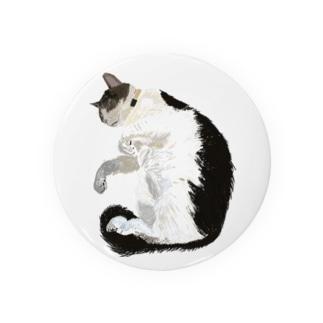 あらゆる場所でくつろぐネコちゃん Badges