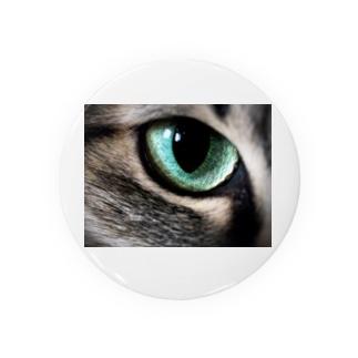 猫眼 Badges