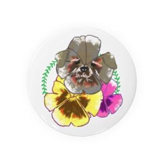 おもしろTシャツ屋(oko)jのパンジーにかくれんぼシュナウザー。 Badges