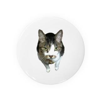 ふぅ Badges