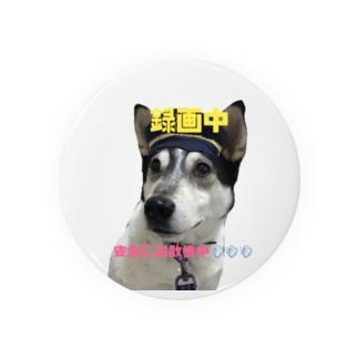安全なお散歩のために「犬のお巡りさん」 Badges