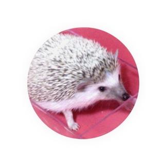はりねずみのIRU赤シリーズ Tin Badge