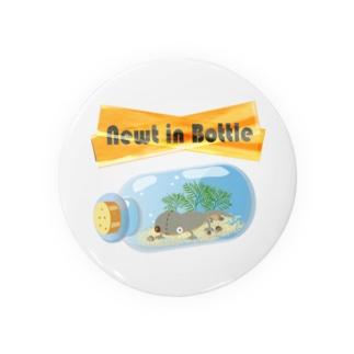 Newt in Bottle Badges