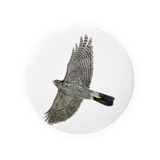 猛禽類 ツミ 🦅 だぞっ‼️ Badge
