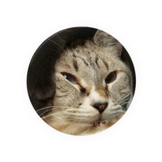 うちの猫シェイミの変顔 Badges
