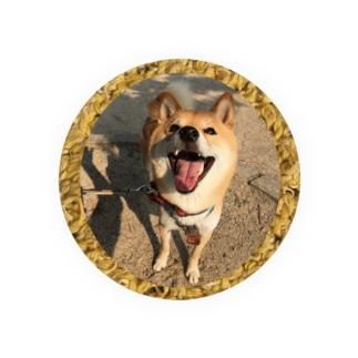 柴犬コタロー Badges