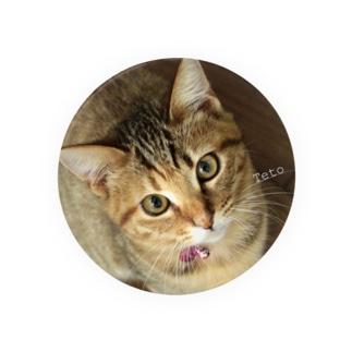 2015保護猫 テトちゃん♪ Badges