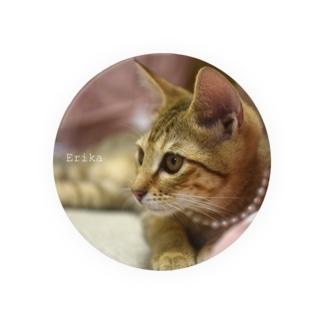 2016保護猫 エリカお嬢様 Badges