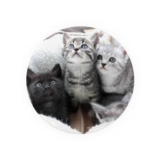2009保護猫 くろたん&れんげ&しろたん Badges