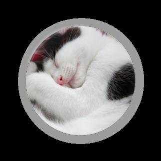 びーにゃんくらぶの2012保護猫 うっしー改め「にこちゃん」 Badges
