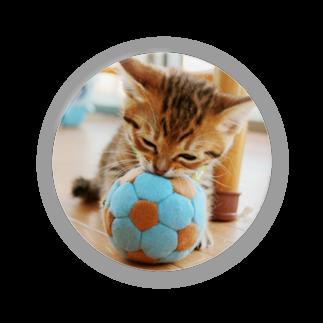 びーにゃんくらぶの2011保護猫 サッカー少年☆来人 Badges