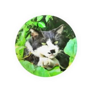 二枚目な猫 缶バッジ