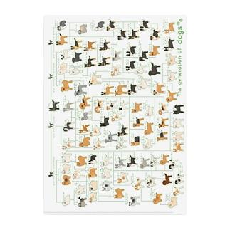 犬の系統図 Clear File Folder