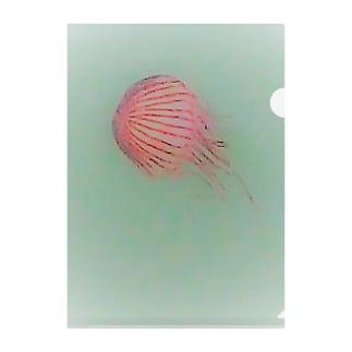 アカクラゲ Clear File Folder