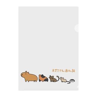 ネズミさん進化論 Clear File Folder