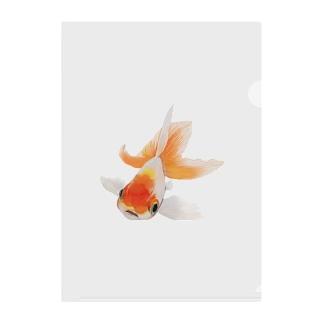 キンギョさん Clear File Folder