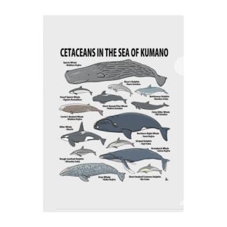 南紀のイルカ・クジラ(淡色下地用) Clear File Folder