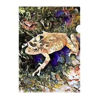 Fantastic Frog -Geode Version- Clear File Folder