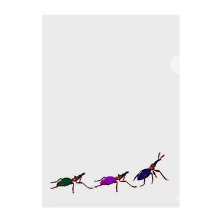 アリモドキゾウムシ(色彩多型) Clear File Folder