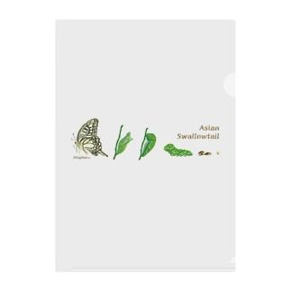 Asian Swallowtail Clear File Folder
