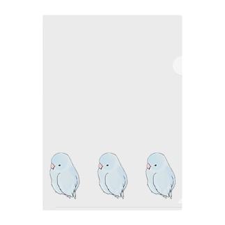 可愛いアメリカンホワイト マメルリハちゃん【まめるりはことり】 Clear File Folder