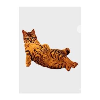 Elegant Cat ① Clear File Folder