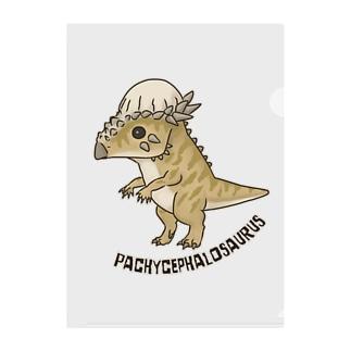 恐竜 パキケファロサウルス Clear File Folder