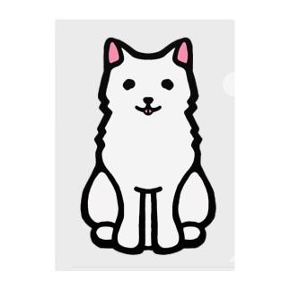 白い毛並みがチャームポイントの日本犬 Clear File Folder