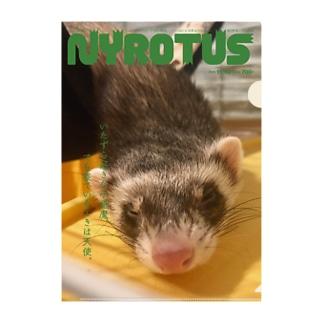 NYORTUS Clear File Folder