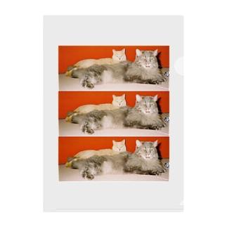 mycats Clear File Folder