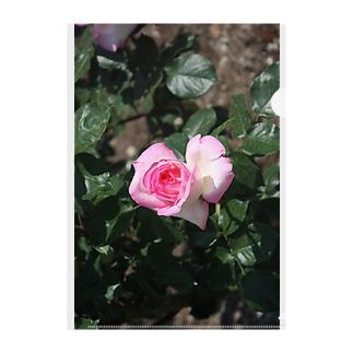 薔薇~ピンクハート Clear File Folder