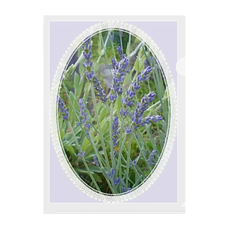 Lavender decorative - 19世紀風 -  Clear File Folder