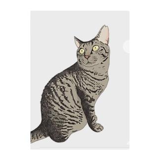 キジ猫見返り美人ミミちゃん Clear File Folder