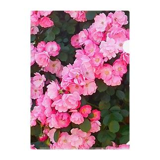 ピンクの薔薇いっぱい Clear File Folder