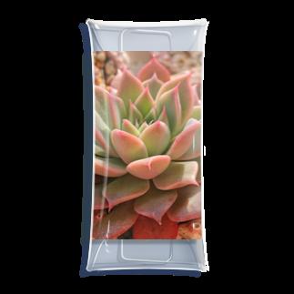 🌵たにくりーむ🍦の多肉植物 Clear Multipurpose Case