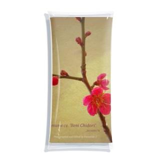 紅梅「紅千鳥」 Prunus mume cv. 'Beni Chidori' 202004176 Clear Multipurpose Case
