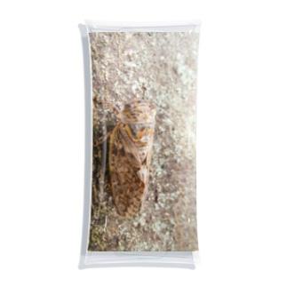 日本の昆虫:アブラゼミ Japanese large brown cicada Clear Multipurpose Case