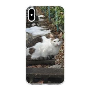 猫さん Clear smartphone cases