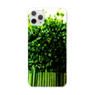 s_001 Clear smartphone cases