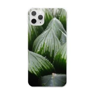 aomatuのハオルチア オブツーサ系3「ブルーレンズ」 Clear smartphone cases