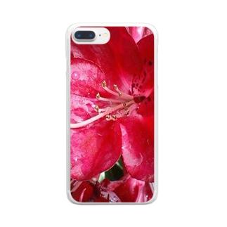 こんなにも鮮やかに・・・ Clear smartphone cases