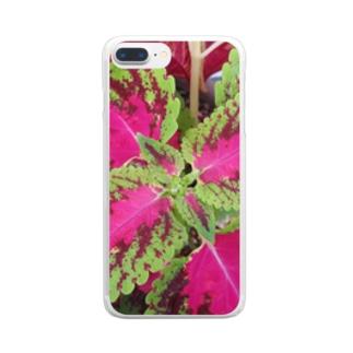 カラーは任せて!! Clear smartphone cases