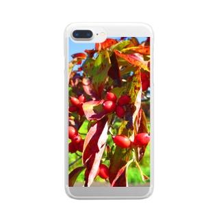 秋ですよ~! Clear smartphone cases
