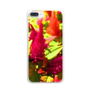 鮮やかカラー!! Clear smartphone cases