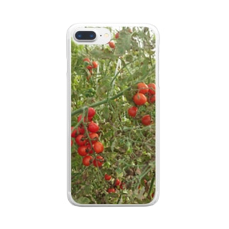 ミニトマト収穫前 Clear smartphone cases