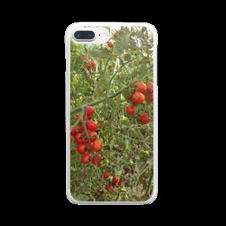 Masakiのミニトマト収穫前 Clear smartphone cases