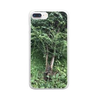 倒木 Clear smartphone cases