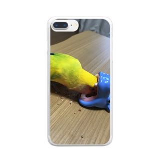 chiffon Clear smartphone cases