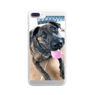 cuuuute Clear smartphone cases